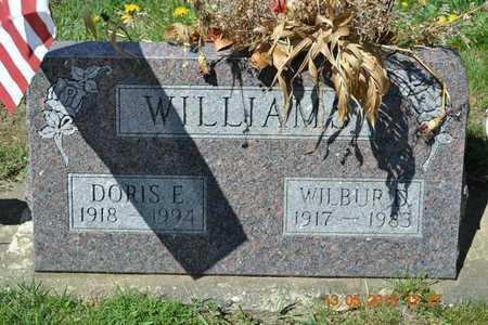 WILLIAMS, DORIS E. - Branch County, Michigan   DORIS E. WILLIAMS - Michigan Gravestone Photos
