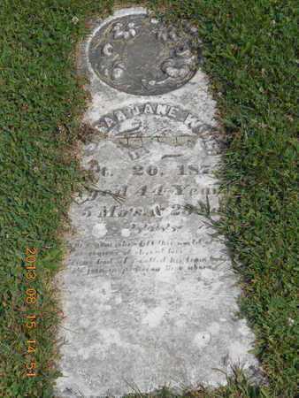 WING, SARAH JANE - Branch County, Michigan   SARAH JANE WING - Michigan Gravestone Photos