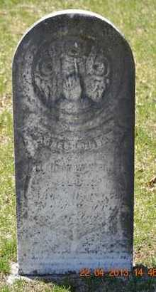 WONSER, AGNES LOUISA - Branch County, Michigan | AGNES LOUISA WONSER - Michigan Gravestone Photos