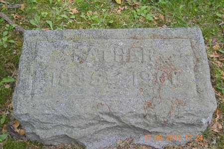 WOODMASTER, HENRY - Branch County, Michigan   HENRY WOODMASTER - Michigan Gravestone Photos