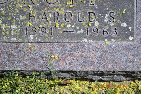 WOODRUFF, HAROLD S.(CLOSEUP) - Branch County, Michigan | HAROLD S.(CLOSEUP) WOODRUFF - Michigan Gravestone Photos