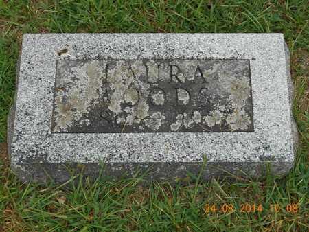 WOODS, LAURA - Branch County, Michigan   LAURA WOODS - Michigan Gravestone Photos