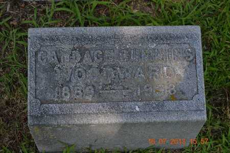 CUMMINS WOODWARD, CANDACE - Branch County, Michigan | CANDACE CUMMINS WOODWARD - Michigan Gravestone Photos