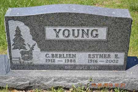 YOUNG, ESTHER E. - Branch County, Michigan | ESTHER E. YOUNG - Michigan Gravestone Photos