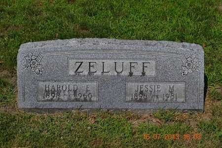 ZELUFF, JESSIE - Branch County, Michigan | JESSIE ZELUFF - Michigan Gravestone Photos
