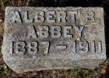 ABBEY, ALBERT B - Calhoun County, Michigan | ALBERT B ABBEY - Michigan Gravestone Photos