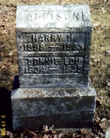 ALLISON, HARRY - Calhoun County, Michigan | HARRY ALLISON - Michigan Gravestone Photos