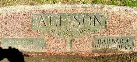 ALLISON, BARBARA - Calhoun County, Michigan | BARBARA ALLISON - Michigan Gravestone Photos