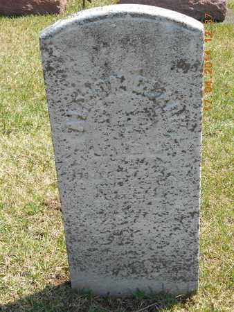 CLARK, ALMON - Calhoun County, Michigan | ALMON CLARK - Michigan Gravestone Photos