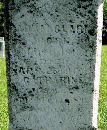 CLARK, CATHARINE - Calhoun County, Michigan | CATHARINE CLARK - Michigan Gravestone Photos