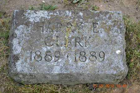 CLARK, HARRY E. - Calhoun County, Michigan | HARRY E. CLARK - Michigan Gravestone Photos