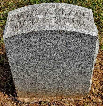 CLARK, HORACE - Calhoun County, Michigan | HORACE CLARK - Michigan Gravestone Photos