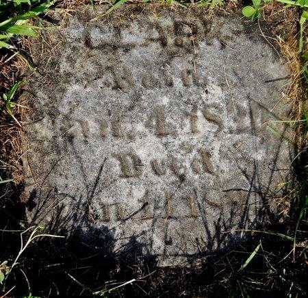 CLARK, JAMES S - Calhoun County, Michigan | JAMES S CLARK - Michigan Gravestone Photos