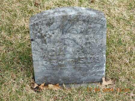 CLARK, MARY - Calhoun County, Michigan | MARY CLARK - Michigan Gravestone Photos