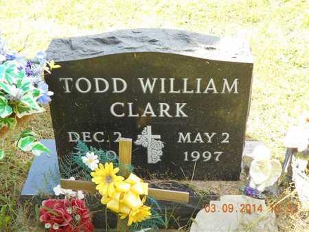CLARK, TODD WILLIAM - Calhoun County, Michigan | TODD WILLIAM CLARK - Michigan Gravestone Photos