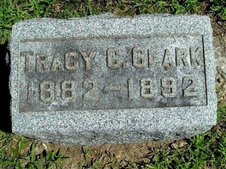 CLARK, TRACY C. - Calhoun County, Michigan | TRACY C. CLARK - Michigan Gravestone Photos