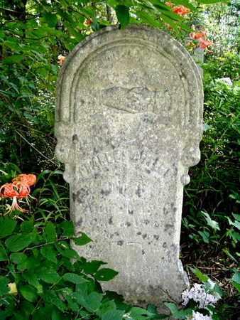 CULTER, CHARLES - Calhoun County, Michigan | CHARLES CULTER - Michigan Gravestone Photos