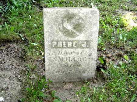 CUTLER, PHEBE - Calhoun County, Michigan | PHEBE CUTLER - Michigan Gravestone Photos