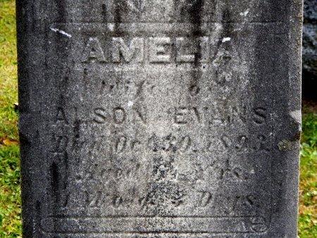 EVANS, AMELIA - Calhoun County, Michigan | AMELIA EVANS - Michigan Gravestone Photos