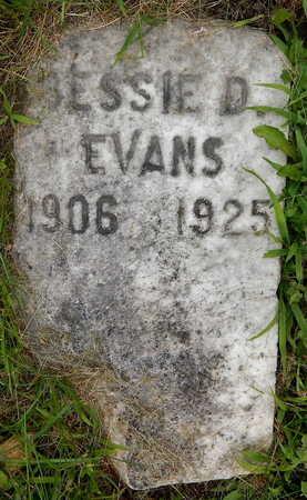 EVANS, BESSIE D - Calhoun County, Michigan | BESSIE D EVANS - Michigan Gravestone Photos