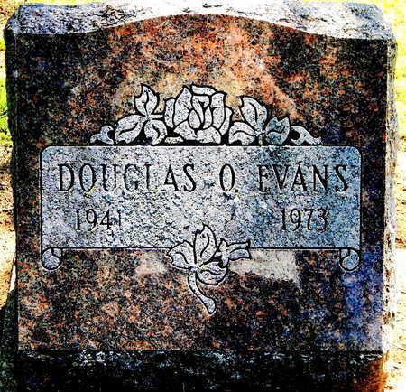 EVANS, DOUGLAS O. - Calhoun County, Michigan   DOUGLAS O. EVANS - Michigan Gravestone Photos