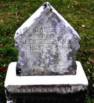 EVANS, DALE E - Calhoun County, Michigan | DALE E EVANS - Michigan Gravestone Photos
