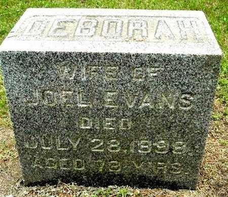 EVANS, DEBORAH - Calhoun County, Michigan   DEBORAH EVANS - Michigan Gravestone Photos