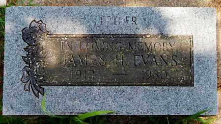 EVANS, JAMES H - Calhoun County, Michigan | JAMES H EVANS - Michigan Gravestone Photos