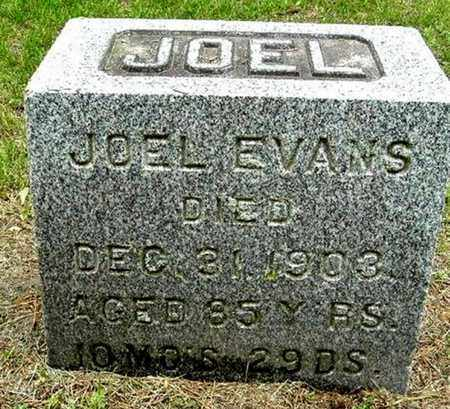 EVANS, JOEL - Calhoun County, Michigan | JOEL EVANS - Michigan Gravestone Photos