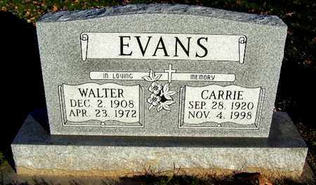 EVANS, WALTER - Calhoun County, Michigan | WALTER EVANS - Michigan Gravestone Photos