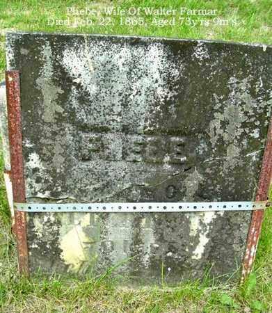 FARMAR, PHEBE - Calhoun County, Michigan | PHEBE FARMAR - Michigan Gravestone Photos