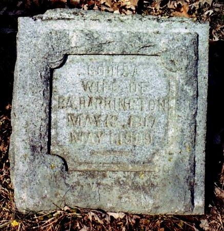 HARRINGTON, LOUISA - Calhoun County, Michigan   LOUISA HARRINGTON - Michigan Gravestone Photos