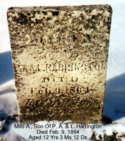 HARRINGTON, MILO - Calhoun County, Michigan | MILO HARRINGTON - Michigan Gravestone Photos