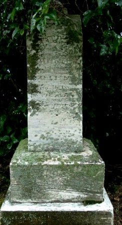 HARRINGTON, SALVINA - Calhoun County, Michigan   SALVINA HARRINGTON - Michigan Gravestone Photos