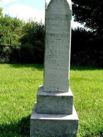 "CLARK, CINDERELLA ""RILLE"" - Calhoun County, Michigan | CINDERELLA ""RILLE"" CLARK - Michigan Gravestone Photos"