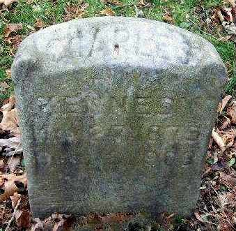 KENNEDY, CHARLES - Calhoun County, Michigan | CHARLES KENNEDY - Michigan Gravestone Photos