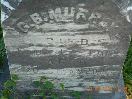 MURRAY, G.B. - Calhoun County, Michigan | G.B. MURRAY - Michigan Gravestone Photos
