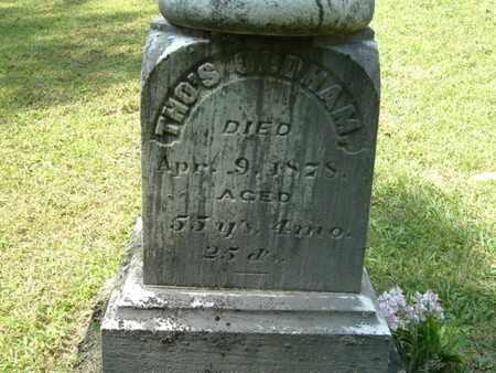 OLDHAM, THOMAS - Calhoun County, Michigan | THOMAS OLDHAM - Michigan Gravestone Photos
