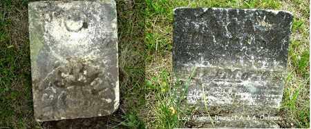 OUTMAN, LUCY - Calhoun County, Michigan | LUCY OUTMAN - Michigan Gravestone Photos