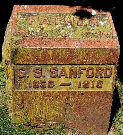 SANFORD, GEORGE S - Calhoun County, Michigan | GEORGE S SANFORD - Michigan Gravestone Photos