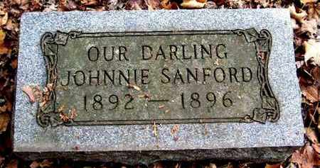 SANFORD, JOHNNIE - Calhoun County, Michigan | JOHNNIE SANFORD - Michigan Gravestone Photos