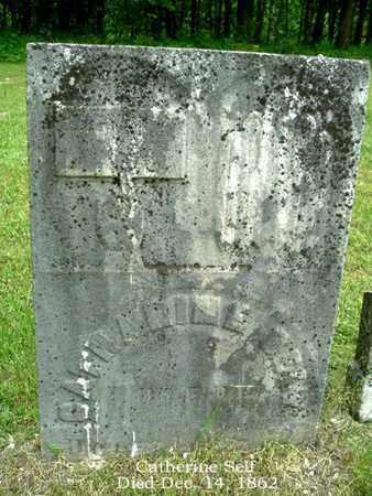 SELF, CATHARINE - Calhoun County, Michigan   CATHARINE SELF - Michigan Gravestone Photos
