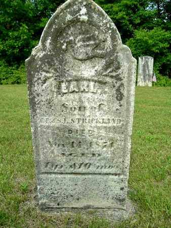 STRICKLAND, WILLIAM EARL - Calhoun County, Michigan | WILLIAM EARL STRICKLAND - Michigan Gravestone Photos