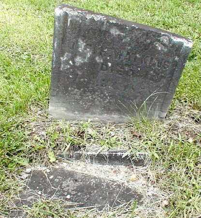 WATKINS, SARAH - Calhoun County, Michigan   SARAH WATKINS - Michigan Gravestone Photos