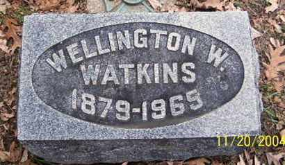 WATKINS, WELLINGTON W - Calhoun County, Michigan | WELLINGTON W WATKINS - Michigan Gravestone Photos