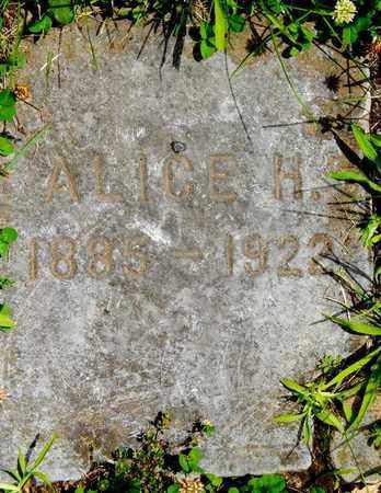 WHITE, ALICE H - Calhoun County, Michigan | ALICE H WHITE - Michigan Gravestone Photos