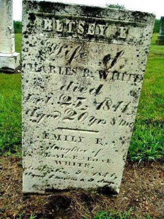 WHITE, EMILY - Calhoun County, Michigan | EMILY WHITE - Michigan Gravestone Photos