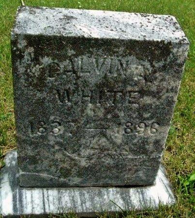 WHITE, CALVIN - Calhoun County, Michigan | CALVIN WHITE - Michigan Gravestone Photos