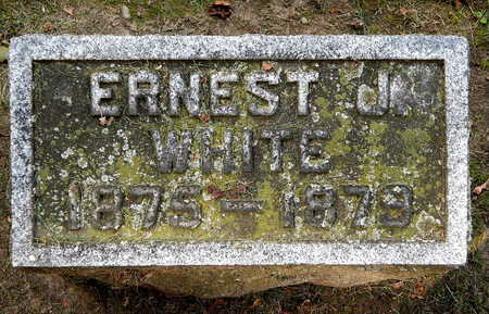 WHITE, ERNEST J - Calhoun County, Michigan | ERNEST J WHITE - Michigan Gravestone Photos