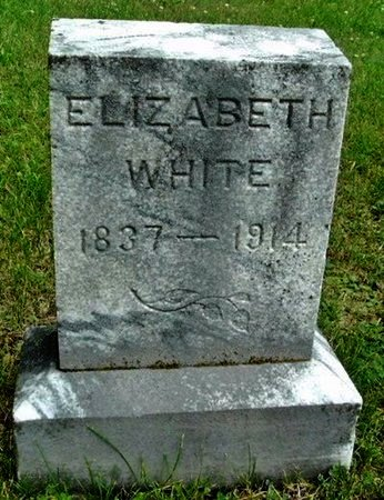 WHITE, ELIZABETH - Calhoun County, Michigan | ELIZABETH WHITE - Michigan Gravestone Photos